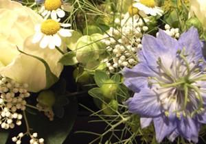 Music & Flower Vol.  6 - 薫風 - 蒼く香りたつ初夏の風にのって。