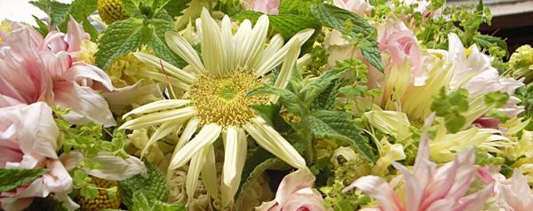 Music & Flower Vol.  7 - ひでり - ひでりをめぐる夏の出来事。