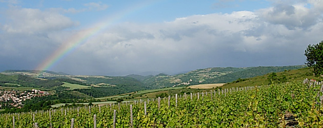 Bon Vivant! - 7 - 雄大なオーベルニュ地方、ワイン、そして人々。