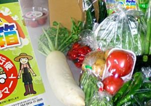 from 鳥取 - 79 - 畑から愛情野菜の直行便!ゆりはま産直セット「夢の箱」