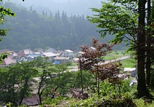 昭和村の夏休み