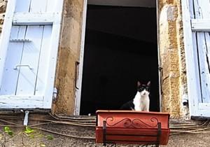 from パリ(河) - 22 - 南仏プロヴァンス、リュベロン地方を訪ねて