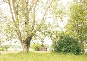 Photo Gallery vol. 20 REGENBOGEN by Akiko Tsunoda