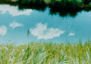 Photo Gallery vol. 28 curtain by masaharu sakaue