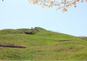 籾山由美の東京-島根 小さな暮らしただいま島根。 遺跡で花摘み、手軽に気分転換。