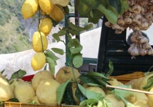 from 北海道(道央) 番外編 《2013夏イタリア》vol.1 レモンの香り漂うアマルフィ海岸。