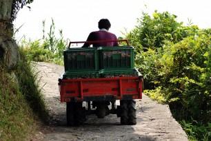 畑からトラックまで狭い道を運びます