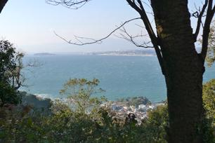 遠くに江ノ島、手前は葉山森戸神社