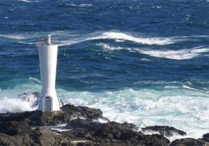 白い灯台と、白い水仙。ミシュラン二つ星の城ヶ島まで。