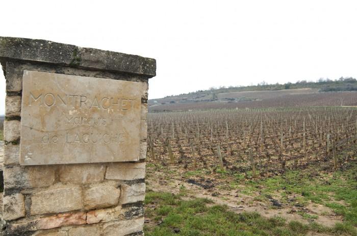 モンラシェ、熟成するシャルドネ。白ワイン最高の土地