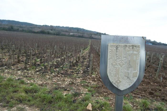 オスピス・ド・ボーヌが保有するムルソー・プルミエ・クリュ・ポリュゾの畑