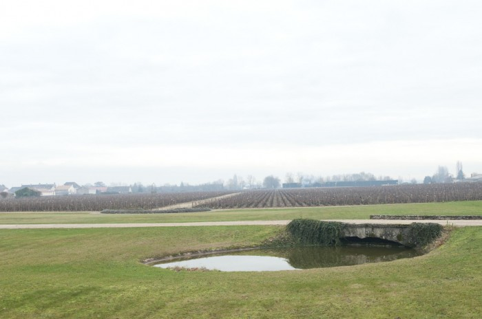 シャトーの前面にはムルソーの畑が広がっている