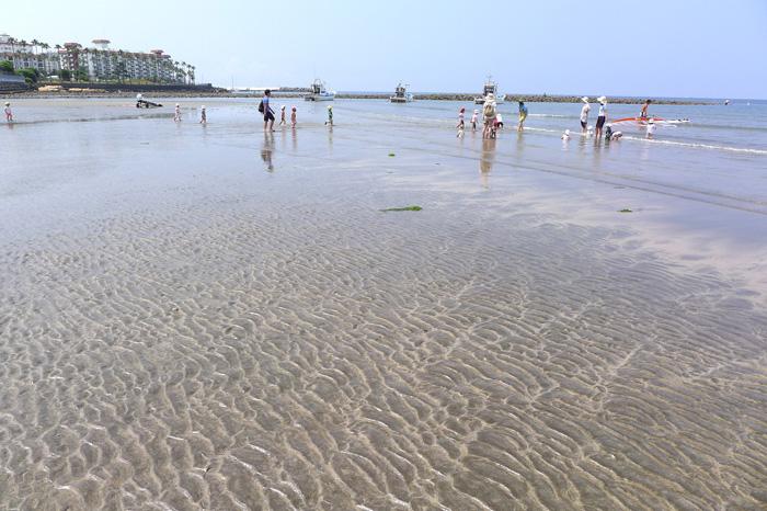 保育園の遠足は材木座海岸。水平線の低い石積みが和賀江島。