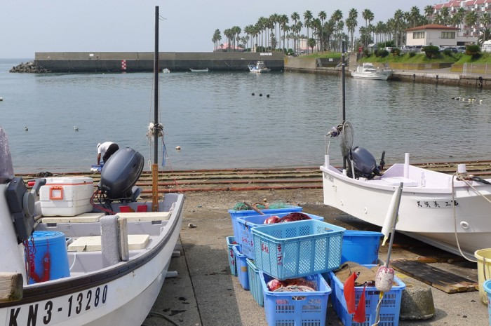 小坪は昔からの漁港