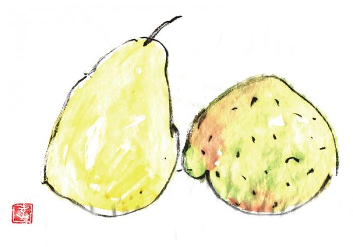 洋梨ル・レクチェとラ・フランス。ル・レクチェは熟成すると綺麗に黄色くなります。ラフランスとの違い。© Takayoshi Tsuchiya