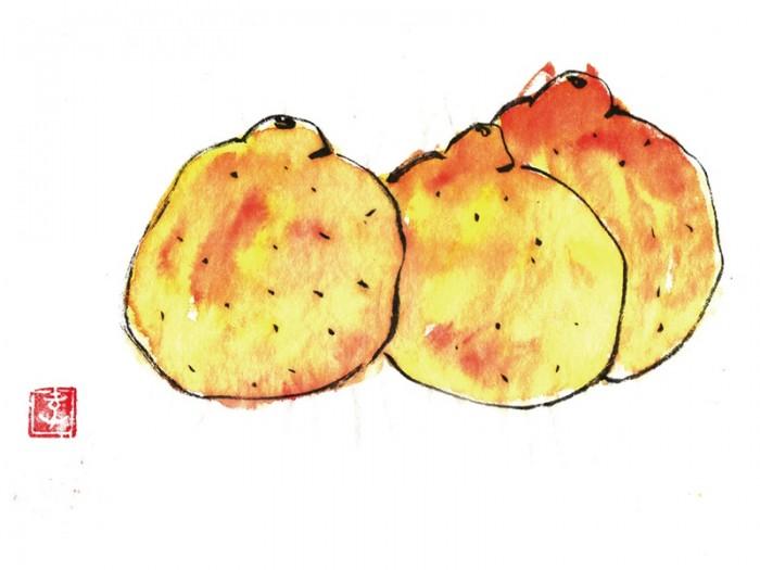 デコポン。柑橘類でも好きな果物です。© Takayoshi Tsuchiya