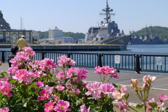 来た時は海上自衛隊の、普通の護衛艦が停泊していたのだが