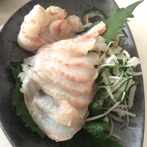 tsukijiwonderland-14