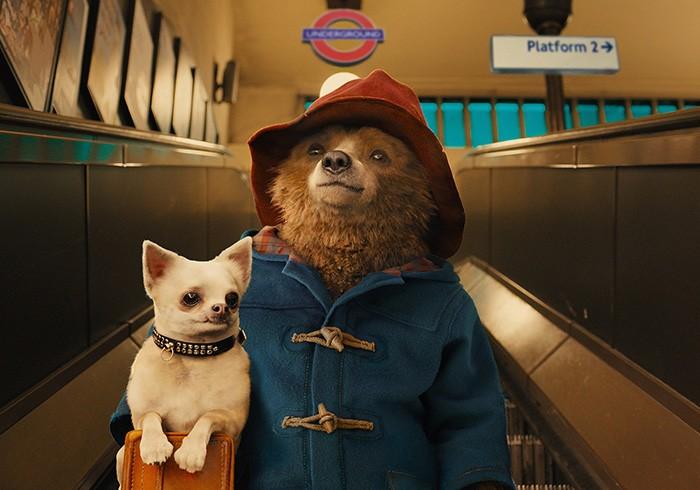 『パディントン』© 2014 STUDIOCANAL S.A. TF1 FILMS PRODUCTION S.A.S Paddington Bear™, Paddington™ AND PB™ are trademarks of Paddington and Company Limited
