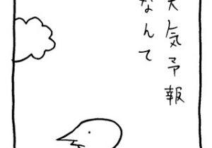 ヤングくん 天気予報