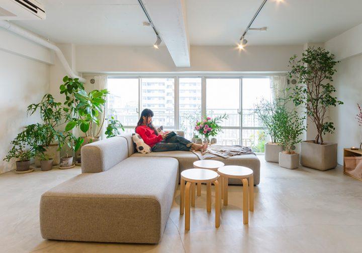 dacapo×TOKOSIE画廊のような空間に 好きなグリーンを飾って